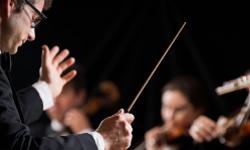 Dozenten an der Internationalen Musikakademie Philharmonika Berlin